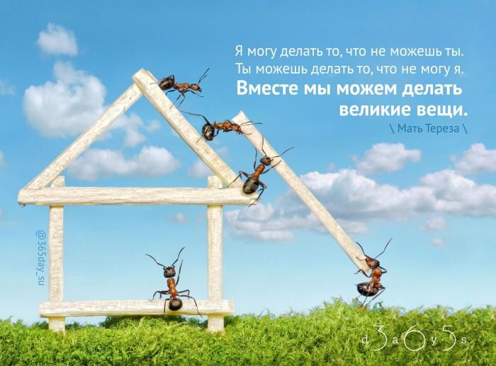 Вместе можно вершить великие дела, и только в общности наша сила