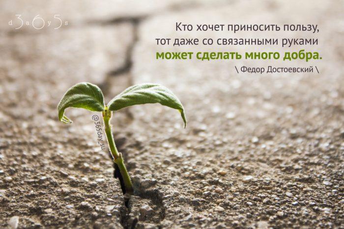 Цитата о добре и пользе