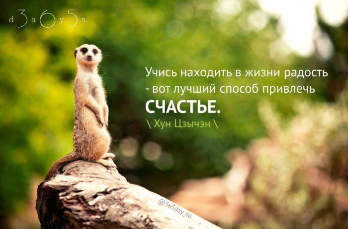 Цитата о счастье и радости
