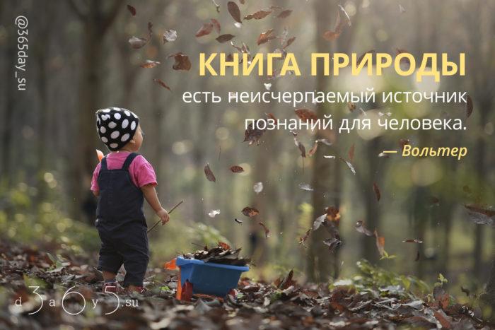 Цитата о природе